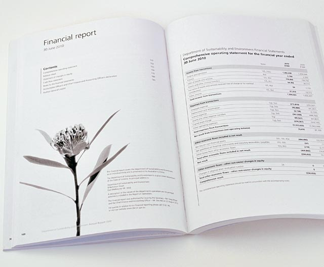 DSE annual report inside spread by Hatch Creative, Melbourne